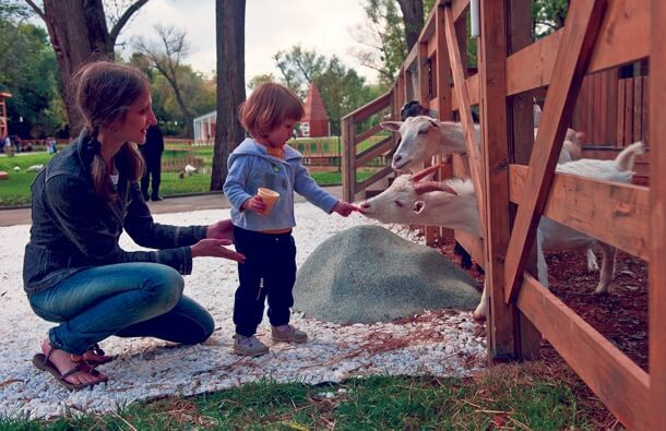 Детская ферма на ВДНХ