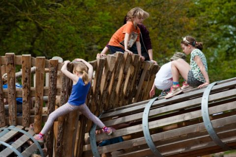 Dinton-Nature-Play-Space-6